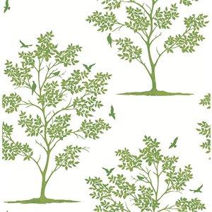 Papier peint Woodland Trees and Birds de Brewster, vert