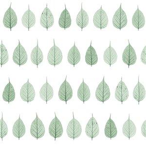 Papier peint verthouse Leaves de ESTA Home, vert