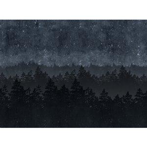 Murale non encollée Nordic Night d'Engblad & Co, 143 po x 105,6 po, noir
