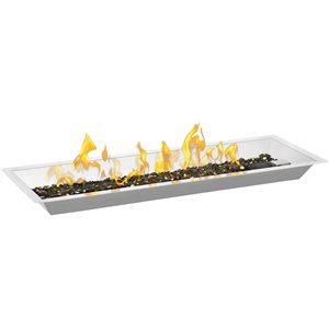 Ensemble d'installation de brûleur linéaire en acier inoxydable de Napoléon, 30 po, topaze