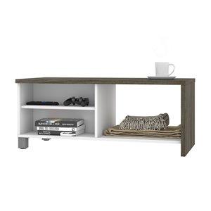 Table à café Lucida de Bestar, 18 po x 42 po, gris boisé/blanc