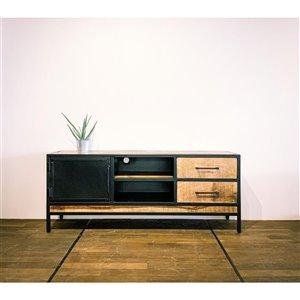 Meuble pour télévision moderne/contemporain Zen de Corcoran à 2 tiroirs, 59 po x 24 po, bois de manguier