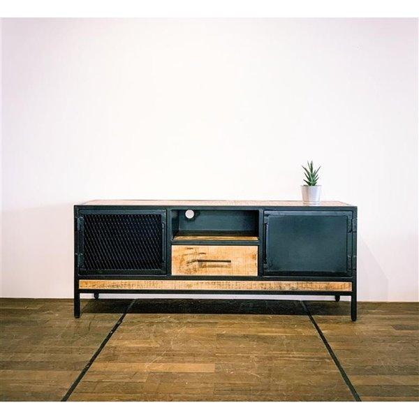 Meuble pour télévision moderne/contemporain Zen de Corcoran à 1 tiroir/2 portes, 59 po x 24 po, bois de manguier