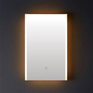 Miroir de salle de bain Phoenix à éclairage DEL de GEF, 20 po, rectangulaire, argent