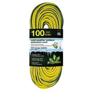 Rallonge électrique lumineuse de 100pi et 16-AWG à 3 broches pour l'extérieur par GoGreen Power, SJEOW, modéré, jaune