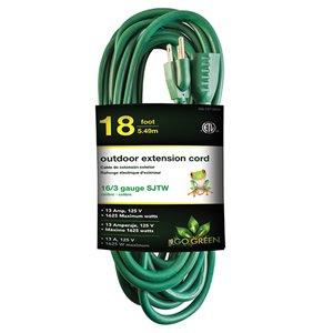 Rallonge électrique de 20pi et 16-AWG à 3 broches pour l'extérieur par GoGreen Power, SJTW, modéré, vert