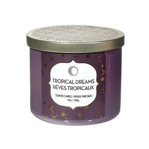 Chandelle en pot Rêves tropicaux de 14 oz et 3 mèches par IH Casa Decor, lot de 2