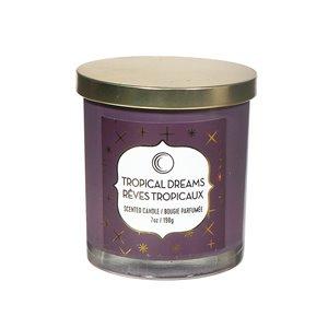 Chandelle en pot Rêves tropicaux de 7 oz et 2 mèches par IH Casa Decor, lot de 2