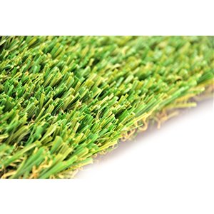 Gazon synthétique de fétuque Spring de Green as Grass, 8 pi x 3 pi