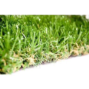 Échantillon de gazon synthétique de fétuque Spring Premium de Green as Grass, 1 pi x 1 pi