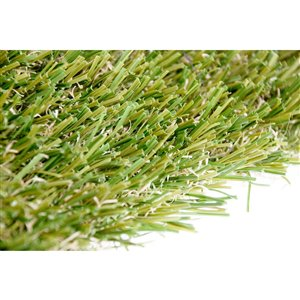 Gazon synthétique Fescue Pro de Green as Grass, 10 pi x 5 pi