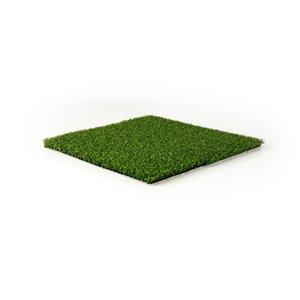 Échantillon de gazon synthétique de fétuque Putting de Green as Grass, 1 pi x 1 pi