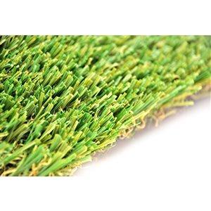 Gazon synthétique de fétuque Spring de Green as Grass, 10 pi x 5 pi