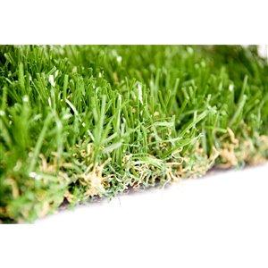 Gazon synthétique de fétuque Spring Premium de Green as Grass, 25 pi x 7,5 pi