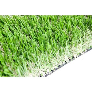 Gazon synthétique de fétuque Sequoia de Green as Grass, 8 pi x 3 pi