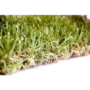 Gazon synthétique Fescue Premium de Green as Grass, 10 pi x 7,5 pi