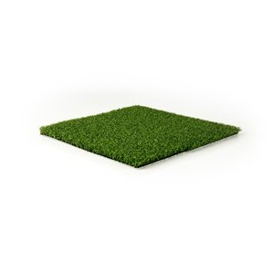 Gazon synthétique de fétuque Putting de Green as Grass, 15 pi x 5 pi