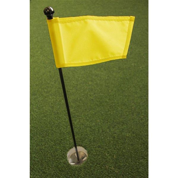 Par Aide Putting Green Kit, Yellow Flag