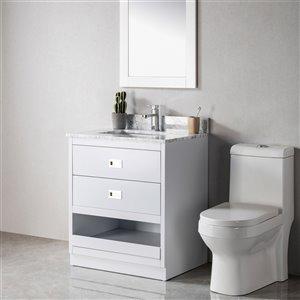 Meuble-lavabo Lisette gris/nickel brossé de 30 po par Jade Bath