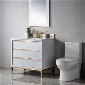 Meuble-lavabo Amelie gris/or brossé de 36 po par Jade Bath