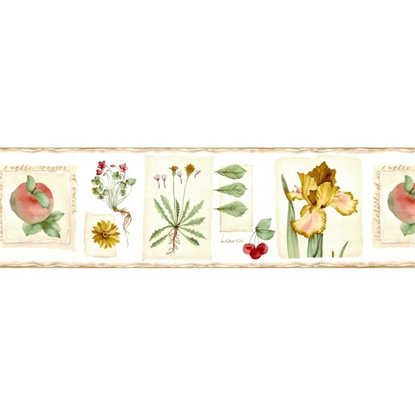 Dundee Deco 6.8-in Brown/Beige/Green/Red Prepasted Wallpaper Border