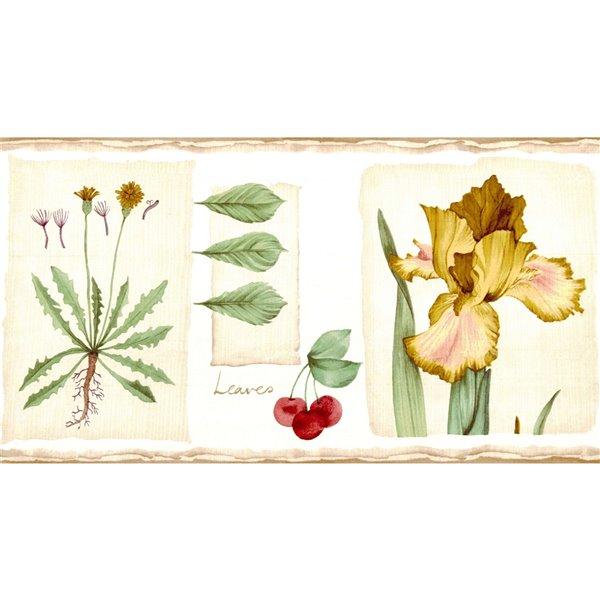 Bordure de papier peint de 6,8 po préencollée par Dundee Deco, marron, beige, vert, rouge