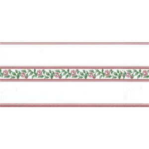 Dundee Deco 5-in Pink/Green Prepasted Wallpaper Border