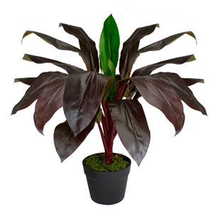 Northlight 23-in Green/Red Artificial Palm Plant