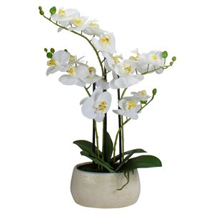 Northlight 22-in White Artificial Orchid Plant