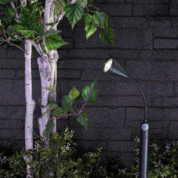Sterno Home 8-lm Black Solar LED Spot Light
