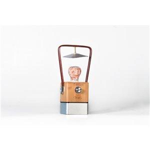 Lanterne de camping DEL rechargeable Vienna 370 lumens de Tru De-Light ( Batterie incluse )