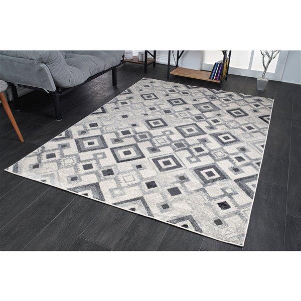 Tapis géométrique moderne de LaDole, 4 pi x 12 pi, gris clair