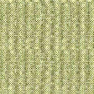 Tissu mural non tissé et non encollé Classic Iconic de Be Shine, motif uni vert pâle, 100 pi²