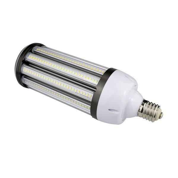 Ampoule DEL blanc brillant à intensité variable 250 watt EQ, 5000K, ED37, par Power Q
