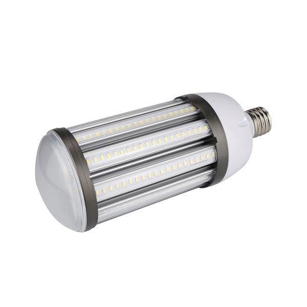 Ampoule DEL blanc brillant à intensité variable 70 watt EQ, 5000K, E25, par Power Q