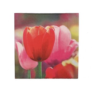 IH CASADECOR 20 Pack Luncheon 3 Ply Napkin (tulips) - Set of 6