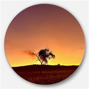 DesignArt 29-in x 29-in Solitary Tree in Namib Desert African Metal Circle Wall Art