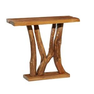 Grayson Lane Modern Brown Console Table