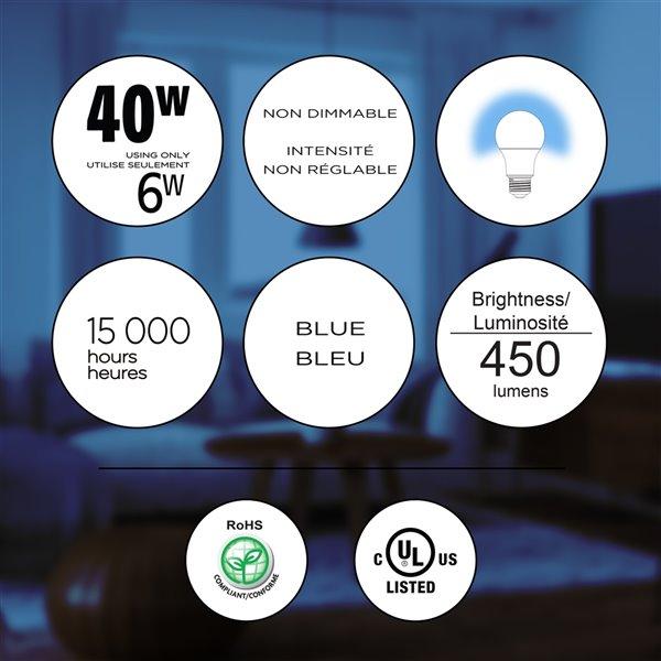 Ampoules bleues à DEL Luminus de 40 W, A19, EQ, paquet de 6