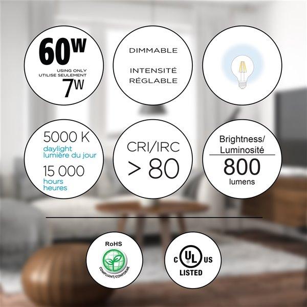 Ampoules à DEL à intensité réglable Luminus de 60 W, G25, EQ, lumière de jour, paquet de 6