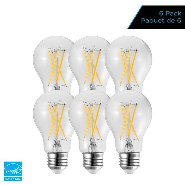 Ampoules à DEL à intensité réglable Luminus de 40 W, A19, EQ, lumière de jour, paquet de 6