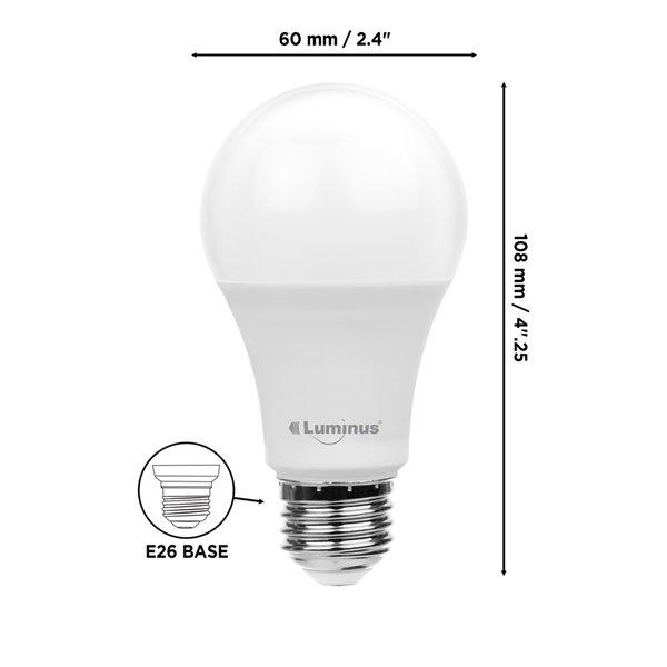 Ampoules à DEL Luminus de 100 W, A19, EQ, lumière de jour, paquet de 12