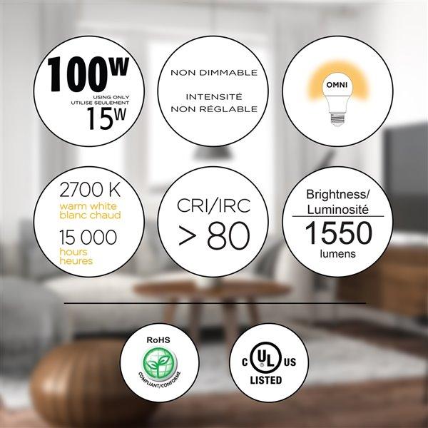 Ampoules à DEL Luminus de 100 W, A19, EQ, blanc chaud, paquet de 6