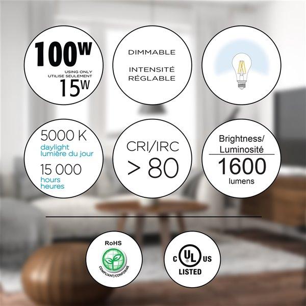 Ampoules à DEL à intensité réglable Luminus de 100 W, A21, EQ, lumière de jour, paquet de 6