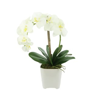 Grayson Lane 7-in x 18-in Natural Bouquet  -  White Plastic and Metal