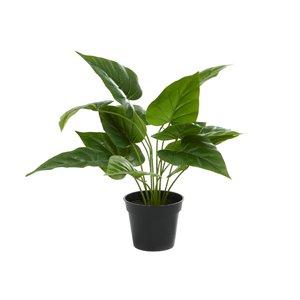 Grayson Lane 16.55-in Green Artificial Philo Plant