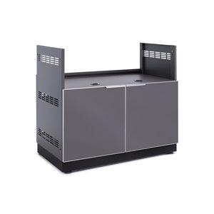 Cuisine extérieure modulaire en aluminium par NewAge Products de 40po