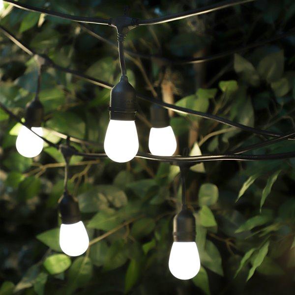 Guirlandes lumineuses Edison à DEL enfichables à 20 ampoules rétro de 42 pi par Danson Decor