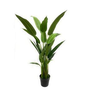 Decor+ 56-in Green Artificial Bird Of Paradise Plant