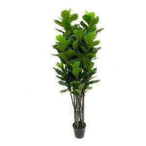 Ficus artificiel vert de 64 po par Decor+